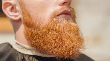 Рыжая борода – гордится или прятать?